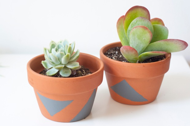 Planter_7